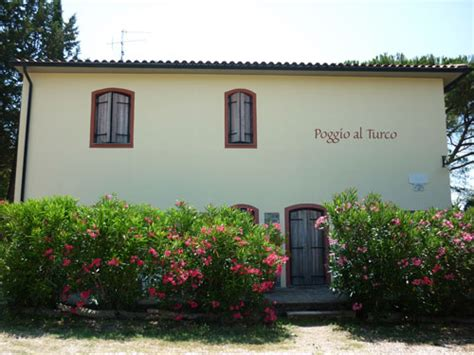 bed and breakfasts for sale bed and breakfast for sale tuscany maremma real estate