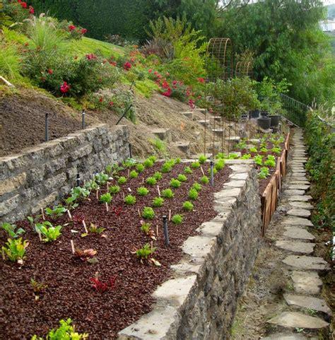Garden Accents Hill Ca A Chef S Garden By Shirley Bovshow Of Edenmakersblog