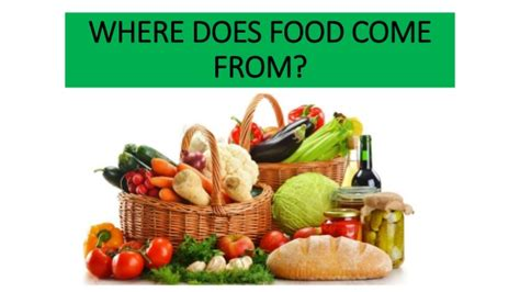 where does come from where does food come from
