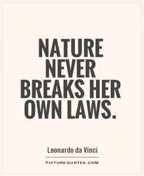 leonardo da vinci paintings drawings quotes biography art is never finished only abandoned picture quotes