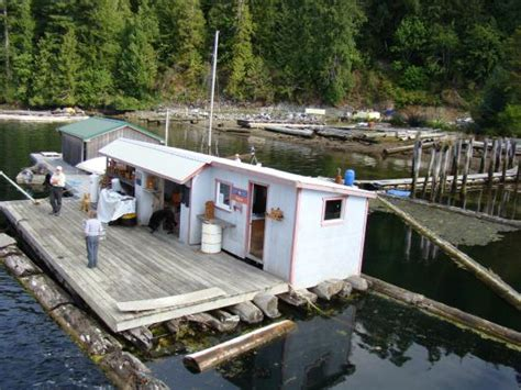 lady rose boat tours canadas last floating post office picture of lady rose