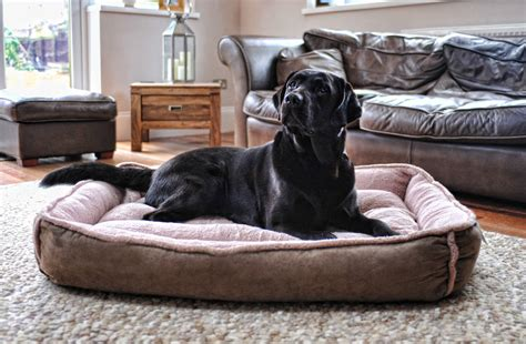 xxl dog beds cradle fleece dog bed xl and xxl by wolfybeds notonthehighstreet com