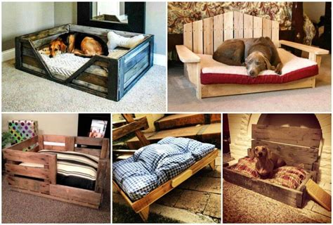 pallet dog bed plans raised pallet dog bed with cushion