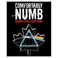 comfortably numb tour dates and concert tickets eventful