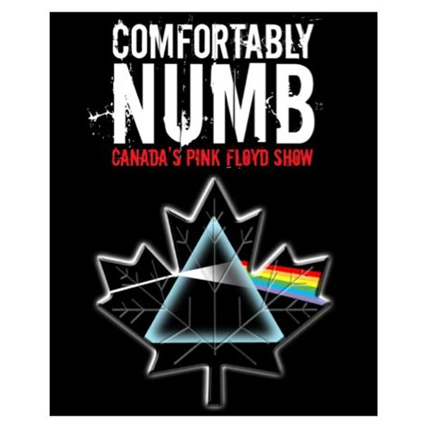 Comfortably Numb Pink Floyd comfortably numb tour dates and concert tickets eventful