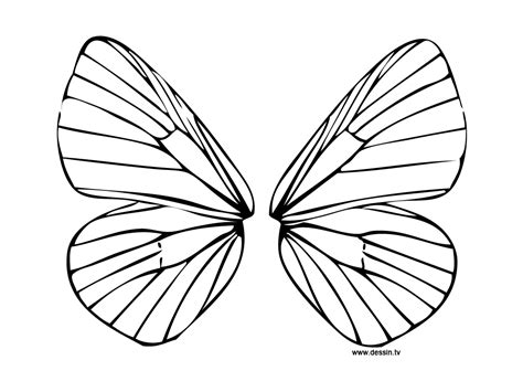 Wings Of Coloring Pages coloring wings