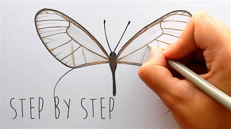 how to draw with colored pencils drawing butterflies with colored pencils butterfly colored