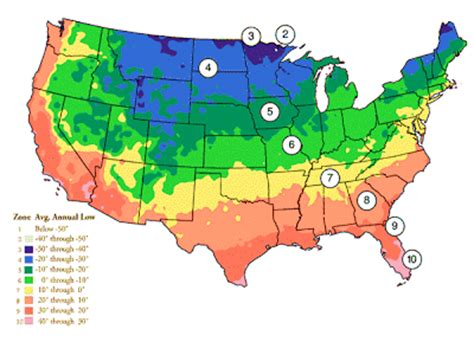 what are zones in gardening style usda hardiness zone finder