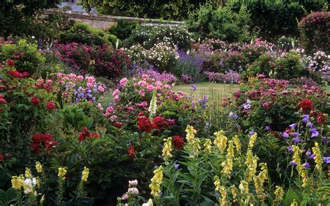 Mottisfont Abbey Rose Gardens Hshire Uk The Best Best Flower Garden In The World