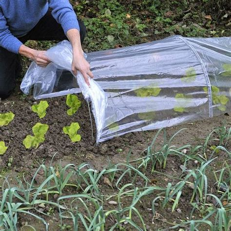 tunnel pour jardin serre tunnel accordon semis semences de 4 mtres destockoutils