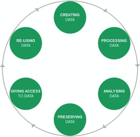 data processing cycle diagram data management libraries grand valley