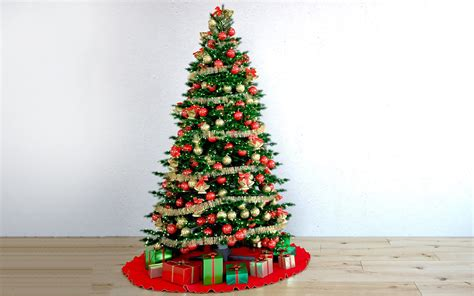 christmas trees to cut yourself october 2014 markham
