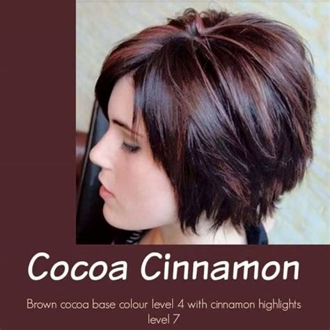 level 4 hair color cocoa cinnamon brown cocoa base color level 4 with