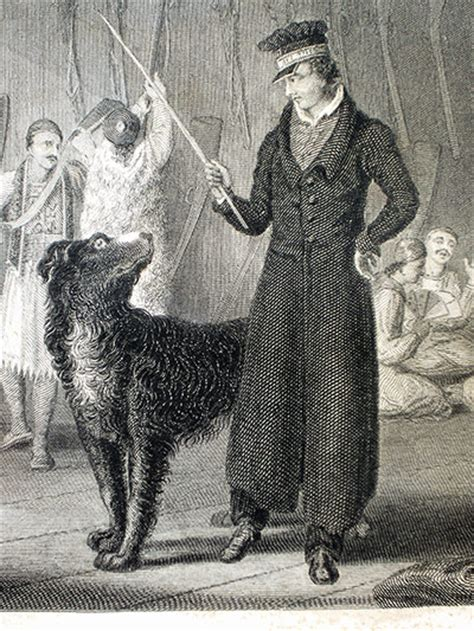 byron s dogs byron and his dogs in pictures books the guardian