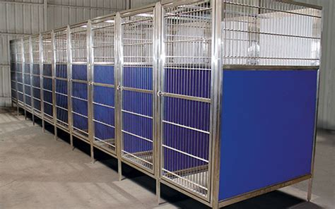 Raised Veterinary Dog Kennels in Stainless or Color Panels