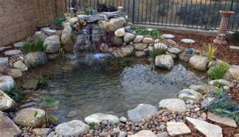how to create a backyard pond how to build a small pond in your backyard