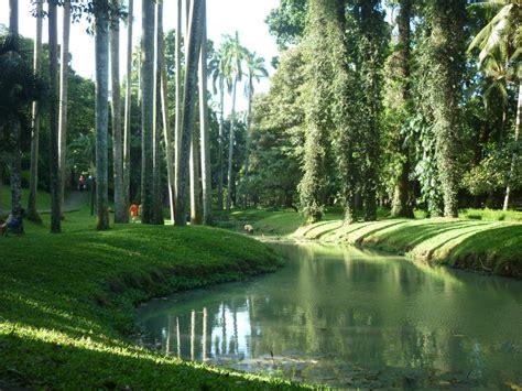 3 Di Jakarta taman taman di jakarta 3 taman langsat kaki berpasir