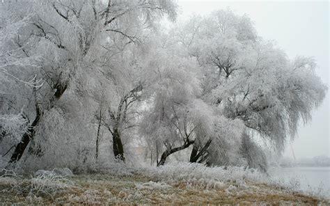 imagenes invierno hd wallpapers hd invierno y nieve parte 9 im 225 genes taringa