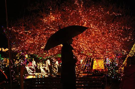 Our Annual List Of Holiday Events In Snohomish County And Lights Stanwood