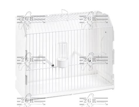gabbie da esposizione gabbia da esposizione con foro laterale 2g r