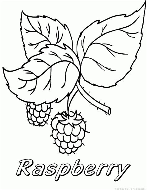 raspberry coloring pages part 2