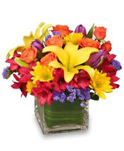 Chicago Gift Baskets Sun Infused Flowers Summer Arrangement Summer Flowers Flower Shop Network