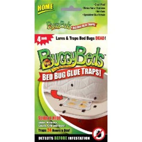 do bed bug traps work bed bug traps bed bug glue traps