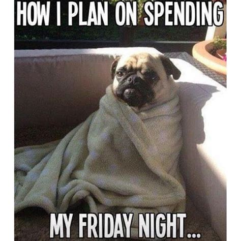 Friday Dog Meme - when you cancel plans to stay in with your dog