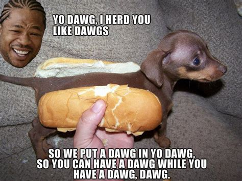 Xzibit Meme Yo Dawg - image 2161 xzibit yo dawg know your meme