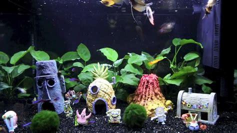 decoracion acuario c 243 mo decorar un acuario blogdecoraciones