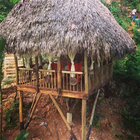 dominican tree house village our room picture of dominican tree house village santa barbara de samana tripadvisor