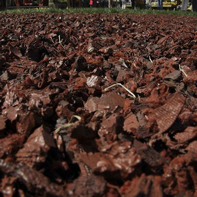 how to select mulch at the home depot