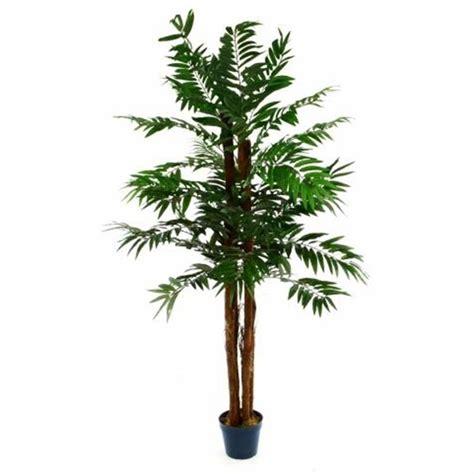 piante finte da interno piante finte artificiali da arredo interno palma areca