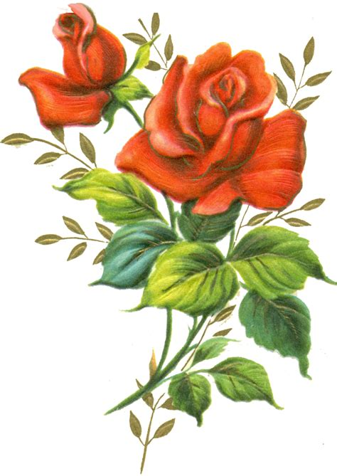 rose png file clip art library