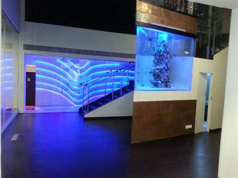 aquarium design jobs designer aquarium india pvt ltd chennai
