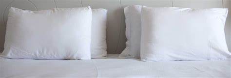 Pillow Reviews Consumer Reports by Best Pillow Buying Guide Consumer Reports