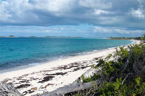 deal of the week silver airways limited time only airfare sale to the bahamas bahamas