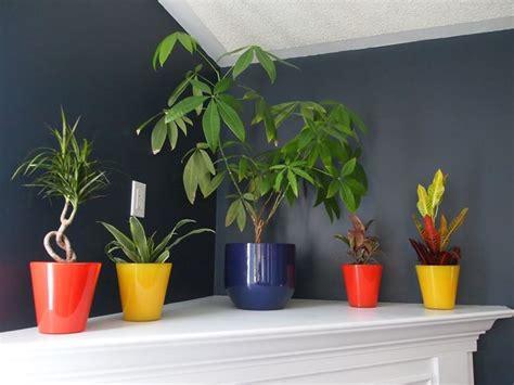vasi colorati da esterno vasi arredo interno vasi da giardino tipologie vasi