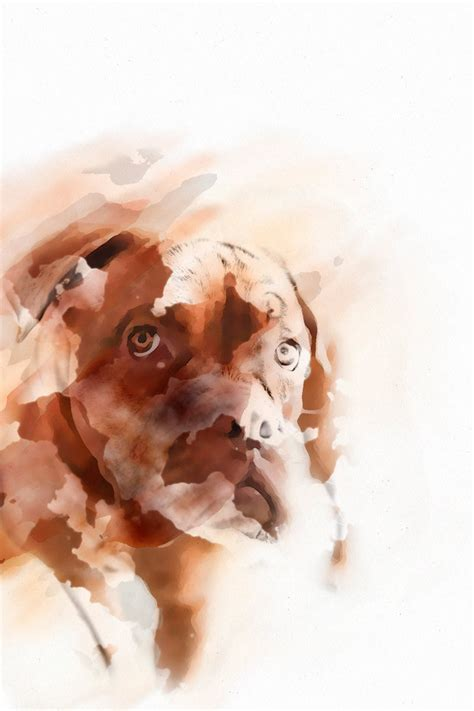 watercolor tutorial photoshop cs4 dog watercolor photoshop action by vril1 on deviantart