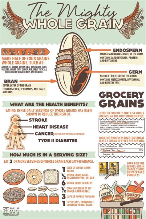 whole grains facts 11 best images about whole grain facts on