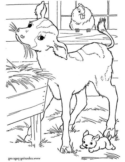 wallpaper hewan hitam putih kumpulan sketsa gambar hewan untuk mewarnai anak archizone