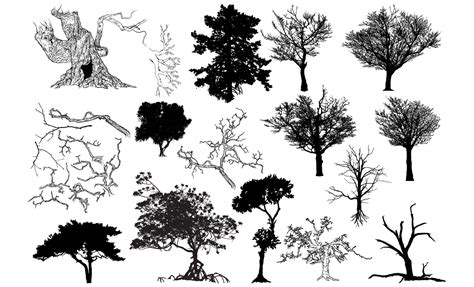 tree vector tree vector shapes pack 2