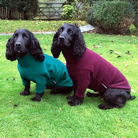 is for dogs polartec fleece jumper rainproof breathable warm and washable equafleece