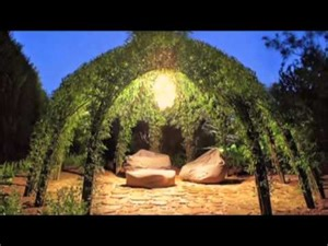 Bonnie gale living willow structures youtube