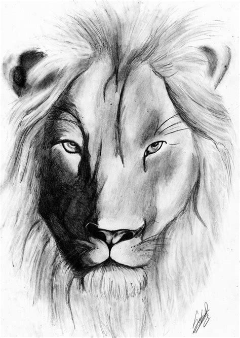 dibujos realistas lápiz dibujos de leones realistas imagui