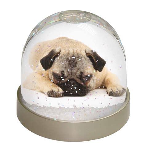 pug snow globe pug snow dome photo globe waterball animal gift ad p92gl ebay