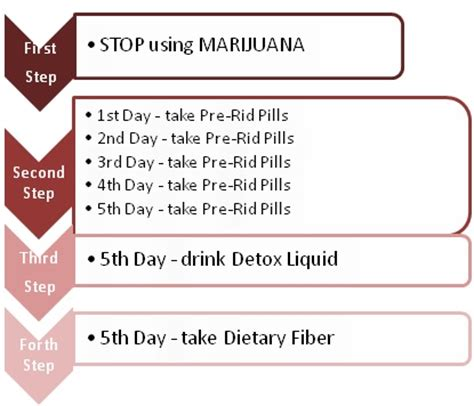 Detox From Cannabis 5 Days by 5 Day Detox Toxin Rid Review Detox Marijuana Fast