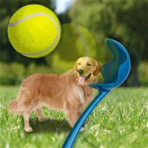 tennis thrower for dogs tennis thrower launcher end 11 6 2018 3 15 pm