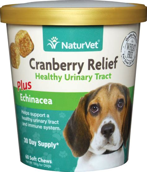 cranberry for dogs naturvet cranberry relief plus echinacea soft chews for