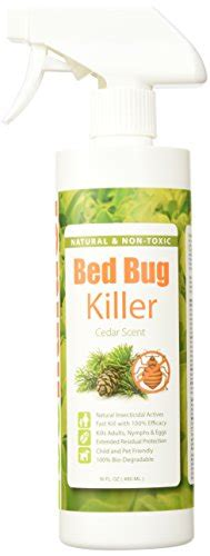most effective bed bug spray bed bug killer by ecoraider 100 fast kill and extended